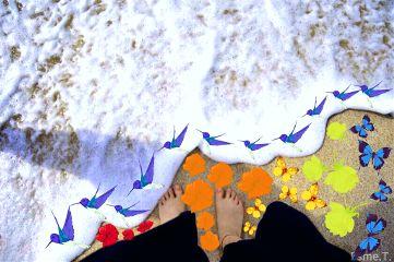 freetoedit rainbow nature remixme ocean