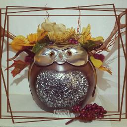 wapautumnvibes owls harvest autumn fallcolors