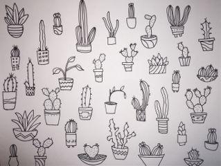 plants drawing freetoedit
