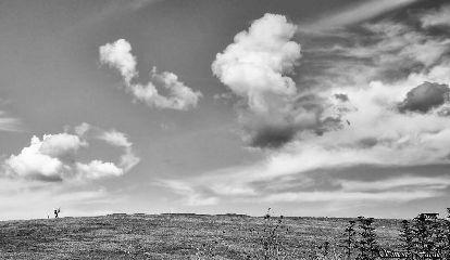 landscape nature photography blackandwhite bokeh