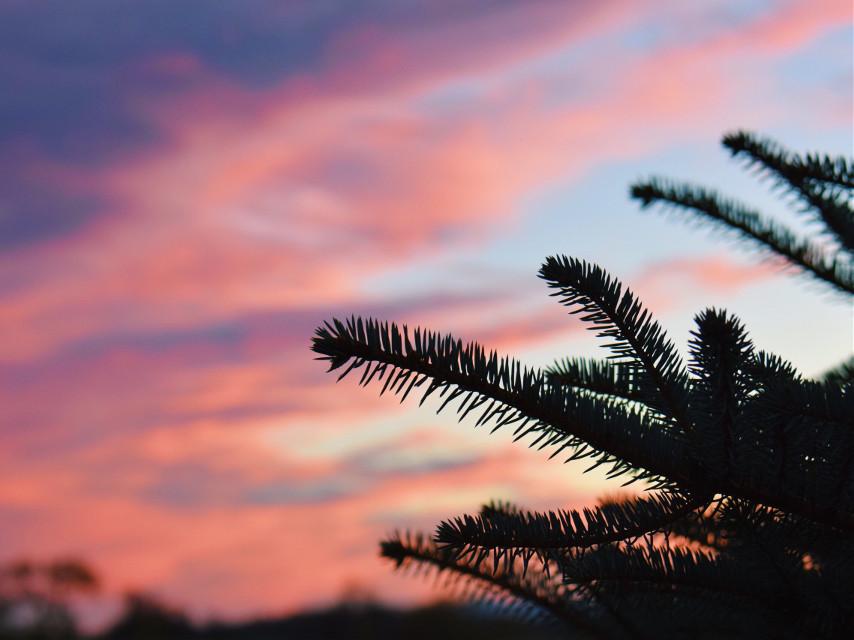 #sunset #nature #photography #sky