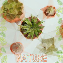 freetoedit mothernature earth plants tumblr